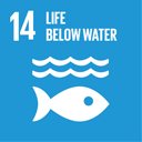 UN-Sustainable-Development-Goals-14