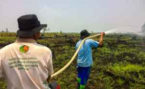 Rimba Raya Biodiversity Reserve | Climate Initiative | Fire Fighting Brigades