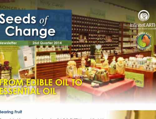 Seeds of Change Newsletter – Q2 2014