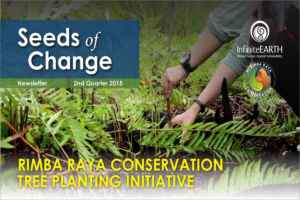 Rimba Raya | Seeds of Change Newsletter | Tree Planting Initiative