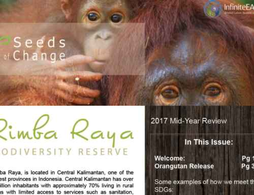 Seeds of Change Newsletter – Mid-Year 2017
